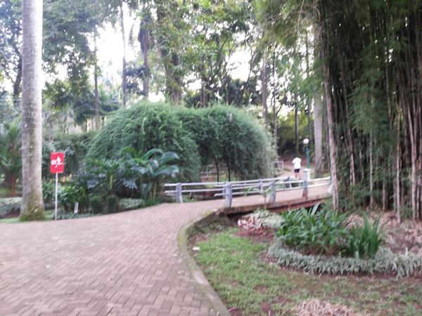 Taman-Langsat-Jakarta