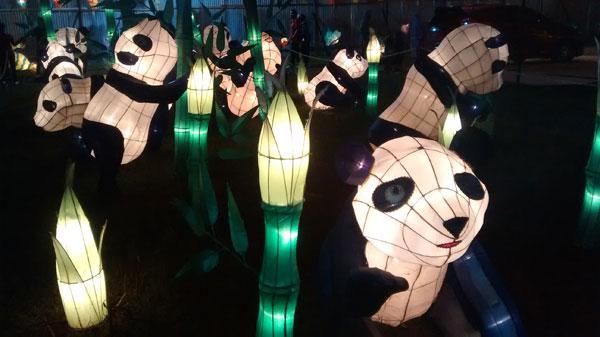 panda-lampion-IMG_20150228_203159167