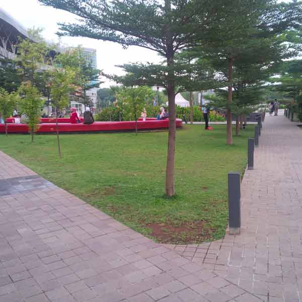 Bxc-park-IMG_20160205_175304