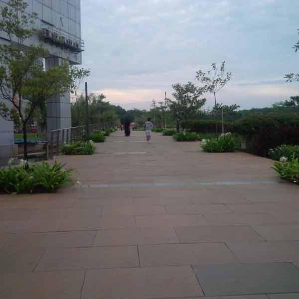 bxc-park-IMG_20160205_175441