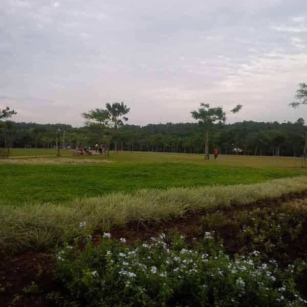 bxc-park-IMG_20160205_175514